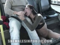 Cock Sucking Fun on The Bus