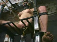 Insex - 411 2nd Day in the Chair (Live Feed From May 18, 2002) RAW