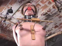Exclusive collection Insex - 40 clips. 3.