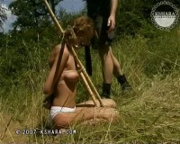 Nightmare in the Forest 2 (Carol) Get Whipped (Amy) Pain Forest 2 (Lola)