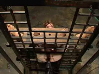 New Collection, BDSM «Insex 2004» — 47 Best clips. Part 2.