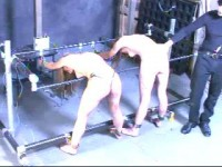 The Trial Live Feed RAW 411, YX - InSex