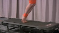 Houseofgord – Treadmill Hopper Training 2015 HD