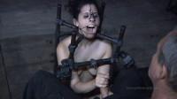 Marina Worthless Cunt Part 2 - BDSM, Humiliation, Torture