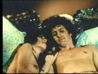 Robins Nest (1980)