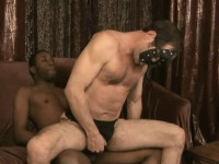 Knightbreeders — Slave To My Hole