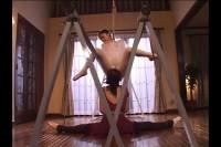 A Lesson of Tyranny - Shibari Ballerina