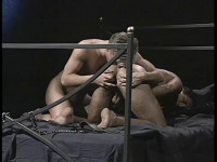 Studio 2000 — Private Members (2007) : vip men tube.
