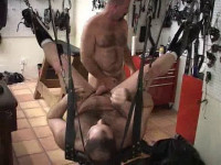 Bear Essentials - video, hard, style, cum