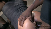 Mia Austin Utterly Destroyed By Dick