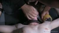 Orgasmogeddon