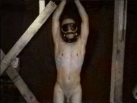 The slave's pits, chest, crotch, belly, balls, and head are shaved - contos veridicos gay...