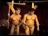 Cock slavery
