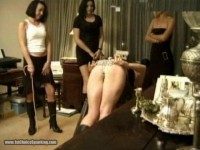 Party Girls Caning Competition