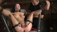 Exclusiv Collection, BDSM «Insex 2005» — 50 Best clips.