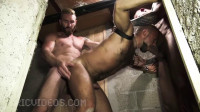 David Andrejz Takes Some Huge Dicks Down To The Basement