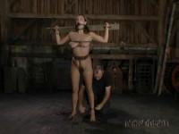 Ms. Roboto | Kali Kane