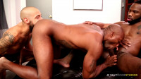 Black meat gets in the ass - oral sex, big dick, fuck fest, hard cock