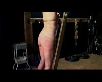 Download BrutalMaster - Leahnim ladder whipping