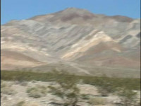 Death Valley Ponygirls