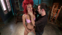 Daisy Ducati — Hot Newbie is Brutally Fucked