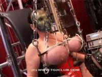 torturegalaxy ju v39