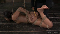 HT Bitch In A Bag – Chanell Heart, Jack Hammer – Apr 16, 2014