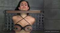 Brat Training: It's Not About You Penny Barber – BDSM, Humiliation, Torture