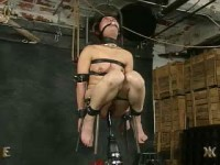 Rent Live Feed 731, 411 - InSex