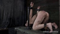 Queen of Pain 2 - Elise Graves