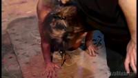 BM Mignotta - Tit Torture Whore