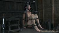 Cage Tales – Hazel Hypnotic – Nyssa Nevers