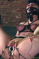 Insex - Sabbatical (Live Feed From January 20, 2002) - Betty
