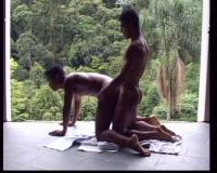 Capoeira Vol. 2