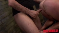 Dani Dare begs for more cock on the sybian.