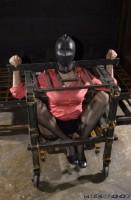 Insex - Water Torture - Donna 2003