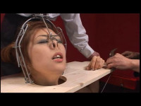 CMC-065 - Facial Distortion Pig Nosed Asians. Various