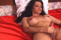 Busty Brunette Tranny Jerks Herself Off