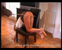 Red ass schoolgirls 2 (50 video)