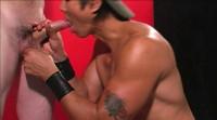 Anatomy Of Bondage
