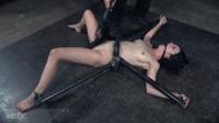 Rita Rollins - Waisted Slut (2016)
