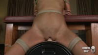 Screaming On The Sybian (2013)