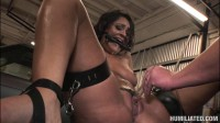 Squirt Disgrace charley chase (2014)