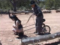 Grand Canyon Ponygirl…And More (2013)