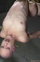Insex - Bald - 1201 2003