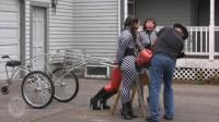 Houseofgord - Three Ponies One Cart  HD 2015