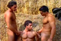 Diamond Pictures - Temptation: Of The Gypsies 2: Ranch Hand Raunch