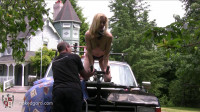 Houseofgord - Naked Hood Ornament - Eden Wells HD 2015