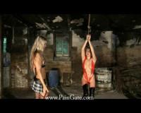 Paingate - Revenge