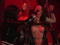 GwenMedia — Pleasure Slaves